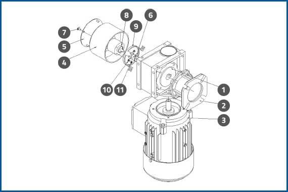 PRO-625W_ConveyorMotorAssembly